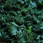 Food Prep: Washing and Storing Kale