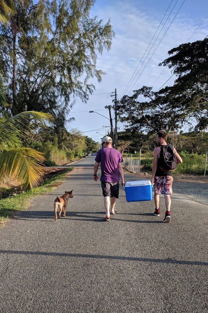 Two people holding a cooler and walking down a street next to a dog.
