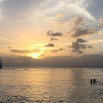 Tobago Dreaming